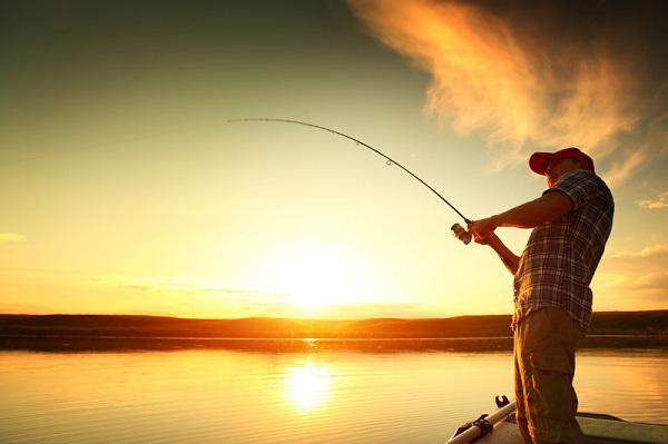 خلاقیت نوآوری ایده خلاقانه فروش ماهی ماهیگیری