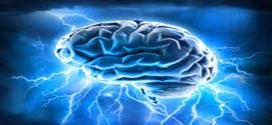 چگونه مغزمان فریبمان می دهد