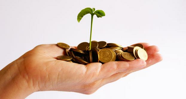 ایده های خلاقانه برای راه اندازی کار با سرمایه کم رشد اقتصادی