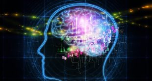 Neuromarketing ۶ تکنیک بازاریابی عصبی طراحی سایت