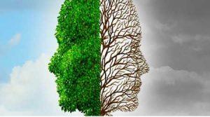 عمل زیبایی مغز